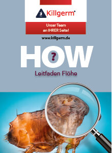 How_to_guide_Flöhe